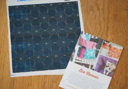 Eco Canvas by Spoonflower ~ My Sashiko Sample
